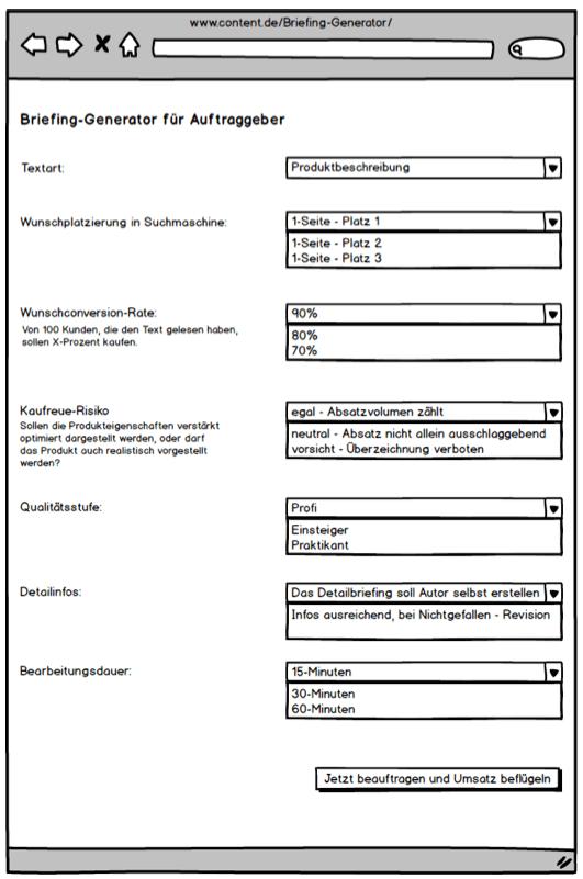Fiktiver Briefinggenerator - content.de